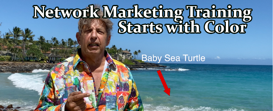 Network Marketer Training Starts With Colors